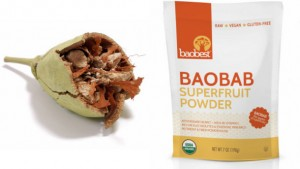 Baobab-Foods-predicts-baobab-will-explode-in-the-US-beverage-industry_strict_xxl